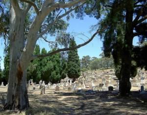 Cmentarz w Sevenhill